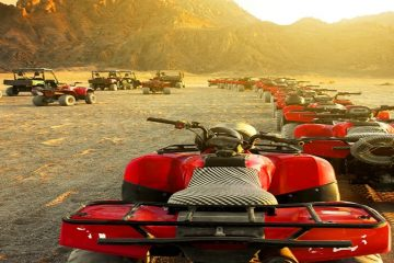 Egypt Safari Tours