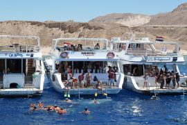 Red Sea Cruise
