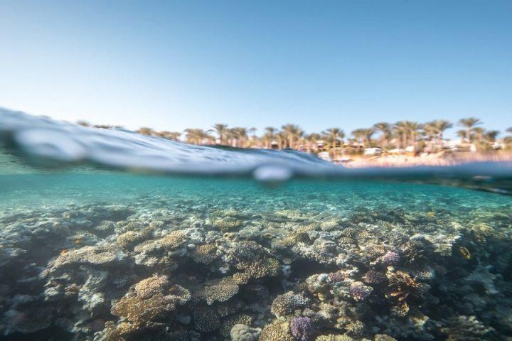 Sharm ElSheikh Sea